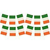 Ireland Flag Bunting Decorations
